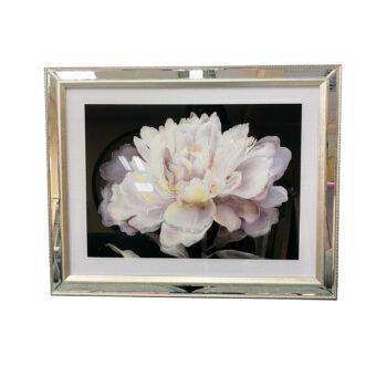 Cuadro Flor B Marco Espejado 50 x 65 cms